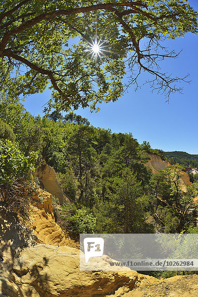 Frankreich Sommer Provence - Alpes-Cote d Azur Ockerberge Sonne Vaucluse