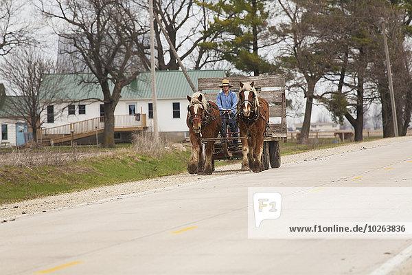 Mann Amerika ziehen fahren Verbindung Amische Iowa