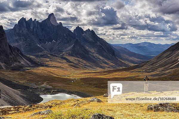 stehend nehmen Tal bunt Ignoranz wandern Herbst Fotografie Grabstein Revierverhalten