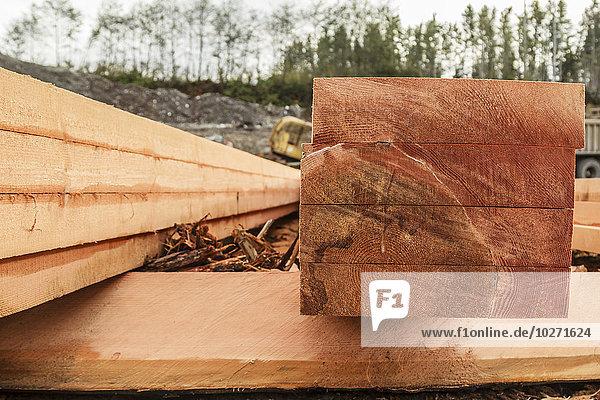 Profil Profile Getreide Frische frontal Muster Holzbrett Brett Bauholz Stapel Freundlichkeit Sinnlichkeit Port McNeill British Columbia Ende roh