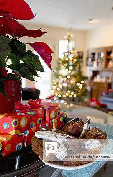 Weihnachtsstern Euphorbia pulcherrima Geschenk nebeneinander neben Seite an Seite Pflanze Vielfalt Zeit Weihnachten Süßigkeit British Columbia Chilliwack