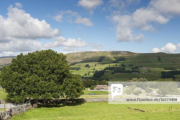 sehen über England North Yorkshire Wensleydale