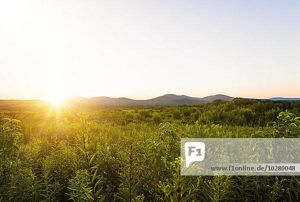 Grünes Tal bei Sonnenuntergang Grünes Tal bei Sonnenuntergang