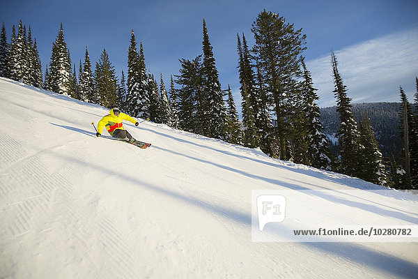 niedrig Mann Ski Ansicht jung Flachwinkelansicht Winkel Hang