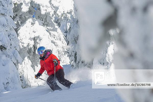 zwischen inmitten mitten Frau bedecken Baum reifer Erwachsene reife Erwachsene Skisport Schnee