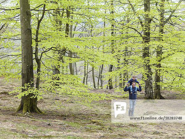 gehen Menschlicher Vater Sohn Wald