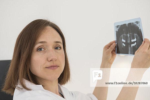 Female dentist examining an X-ray report  Munich  Bavaria  Germany