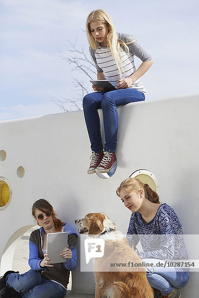 Three friends in a playground with dog  Munich  Bavaria  Germany