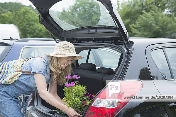 Mature woman loading flower plant in a car trunk  Augsburg  Bavaria  Germany