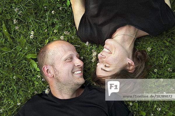 Mittleres erwachsenes Paar im Gras liegend