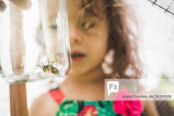Nahaufnahme von Großvaters Hand hält Insekt im Glas für Enkelin