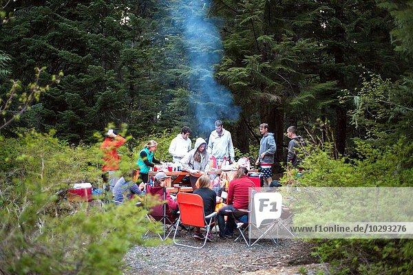 Gruppe von Freunden beim Picknick im Wald