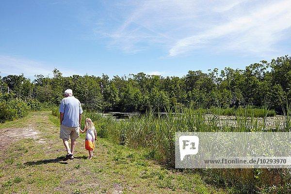 Rückansicht des Mädchens und Großvaters beim Spaziergang am ländlichen See