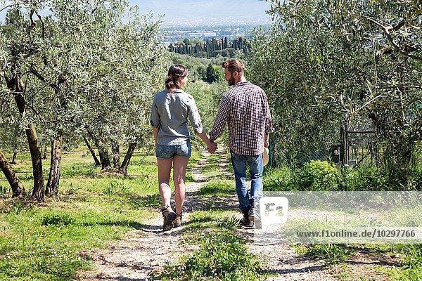 Durchgehende Rückansicht des Paares  das Hand in Hand auf einem Feldweg geht.