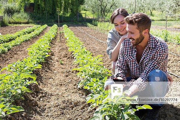 Junges Paar hockt im Gemüsegarten und hält das Smartphone lächelnd in der Hand Junges Paar hockt im Gemüsegarten und hält das Smartphone lächelnd in der Hand
