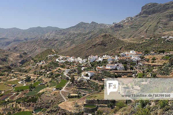 Ausblick auf Tejeda  Gran Canaria  Kanarische Inseln  Spanien  Europa