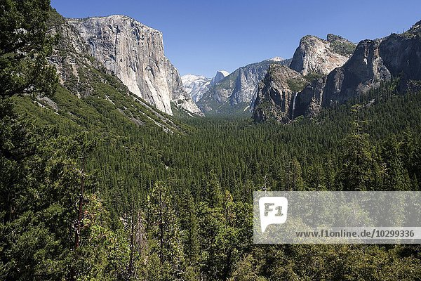 Ausblick vom Tunnel View ins Yosemite Valley  links El Capitan  Yosemite Nationalpark  Kalifornien  USA  Nordamerika