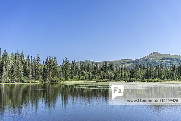 Landschaft  See  Berge  Lake Solitude  Solitude  Utah  USA  Nordamerika