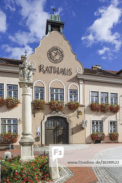 Rathaus  Markt Piesting  Niederösterreich  Österreich  Europa