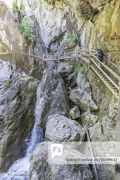 Steig in der Bärenschützklamm  Mixnitz  Steiermark  Österreich  Europa