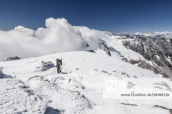 Bergsteiger beim Aufstieg auf den Löffler  hier am Gipfelgrat  unten der Floitenkees  hinten der Schwarzenstein  Zillertaler Alpen  Ahrntal  Tauferer Ahrntal  Pustertal  Südtirol  Trentino-Südtirol  Italien  Europa