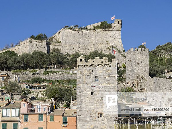 Türme mit Stadtmauer  Portovenere  Ligurien  Italien  Europa