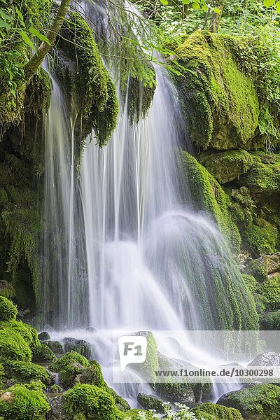 Wasserfall am Mixnitzbach  Mixnitz  Steiermark  Österreich  Europa