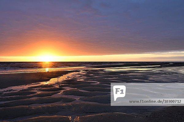Sonnenuntergang bei Ebbe  Nordsee  Texel  Westfriesische Inseln  Nordholland  Niederlande  Europa