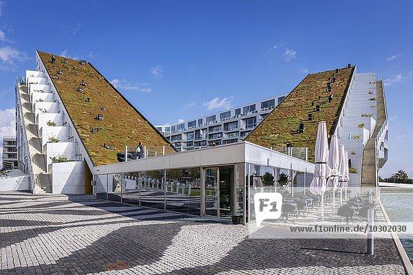 8-Haus  auch 8 Tallet oder Big House  modernes Gebäude  von Architekt Bjarke Ingels  2011 Preis für das beste Gebäude der Welt  Stadtteil Ørestad  Kopenhagen  Dänemark  Europa