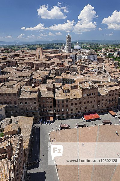 Piazza del Campo  Cathedral of Santa Maria Assunta behind  UNESCO World Heritage Site  Siena  Tuscany  Italy  Europe