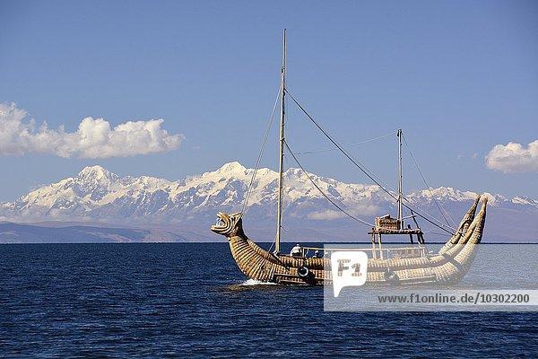 Typical reed boat on Lake Titicaca  La Paz region  Bolivia  South America