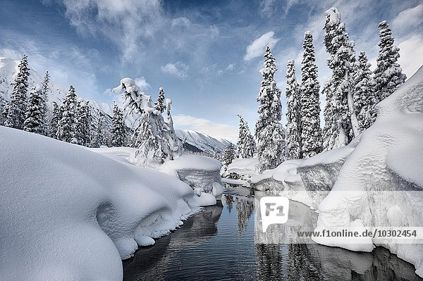 Hoher Schnee am Bench Creek  Turnagain Pass  Alaska  USA  Nordamerika