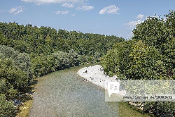 Fluss Isar  Ausblick von der Grünwalder Brücke  Grünwald  Oberbayern  Bayern  Deutschland  Europa