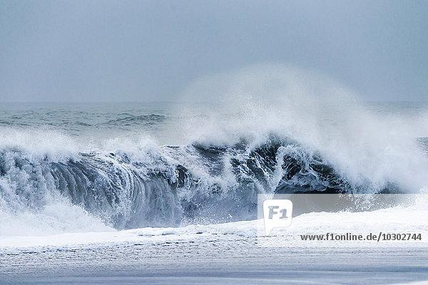 Meeresbrandung  bei Vik  Südisland  Island  Europa