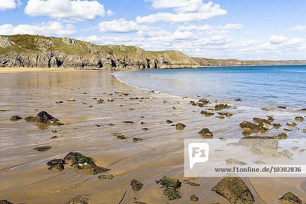 Barafundle Bay  Pembrokeshire  Wales  Großbritannien  Europa