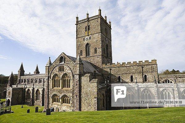 St. David's Cathedral  St. Davids  auch St. Davids  Pembrokeshire  Wales  Großbritannien  Europa