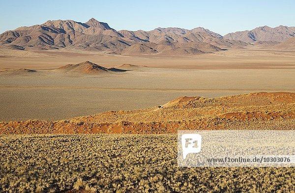 Mit Buschmanngras (Stipagrostis sp.) bewachsene Sanddünen  trockene Wüsteneben und isolierte Bergrücken am Rande der Namib-Wüste bei den exklusiven Wolwedans Safari-Camps  NamibRand-Naturreservat  Namibia  Afrika