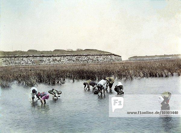 Bauern beim Reisanbau  Japan  Asien