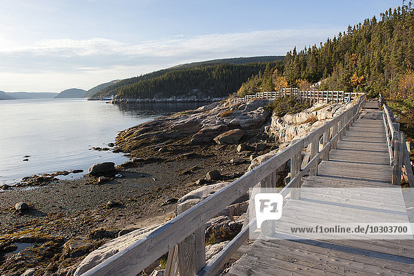Boardwalk along tranquil lake
