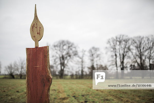 Germany  Brandenburg  oversized wooden Advent candles standing on a meadow