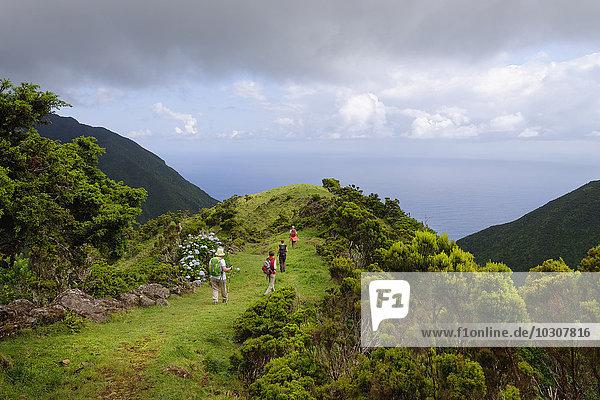 Portugal  Azores  Sao Jorge  Hikers from Piquinho da Urze to Faja da Caldeiro de Santo Christo