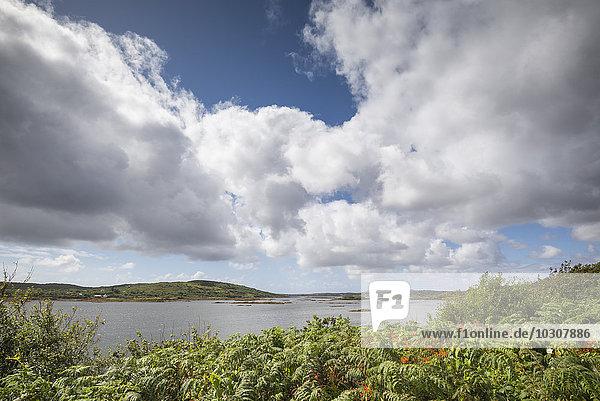 Irland  Grafschaft Galway  Bertaghboy Bay bei Cashel