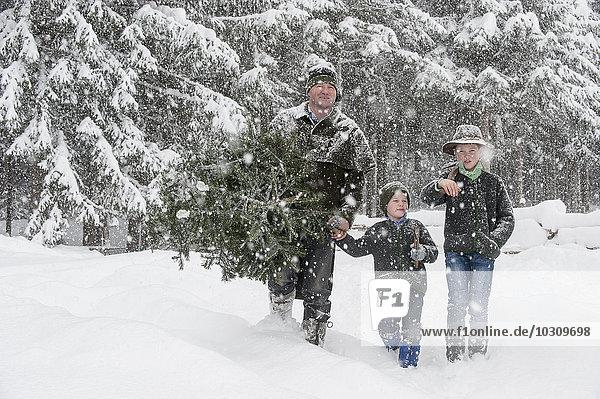 Österreich  Altenmarkt-Zauchensee  Vater mit zwei Söhnen mit Weihnachtsbaum in Winterlandschaft
