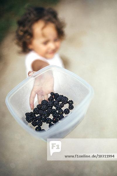 Mädchenhand hält Plastikdose mit gepflückten Brombeeren