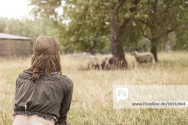 Frau betrachtet Schafherde auf Biobauernhof