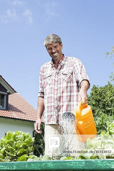 Mann bewässert Pflanzen im Garten