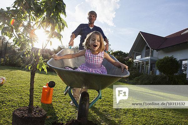 Vater mit Tochter in Schubkarre pflanzt Baum im Garten