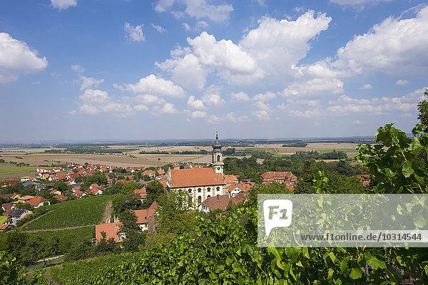 Deutschland  Bayern  Castell  Weinberg und Schlosskirche