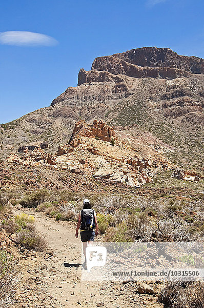 Spanien  Kanarische Inseln  Teneriffa  Los Roques de Garcia  Teide-Nationalpark  Wandererinnen
