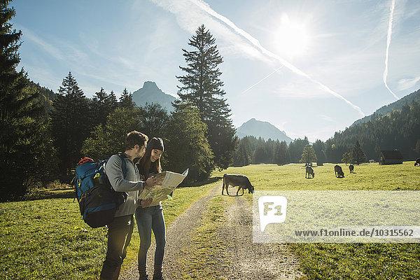 Österreich  Tirol  Tannheimer Tal  zwei junge Wanderer mit Wanderkarte